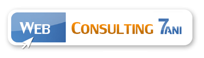 Web Consulting Agency